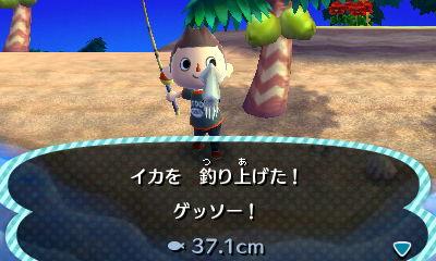 イカを 釣り上げた! ゲッソー!