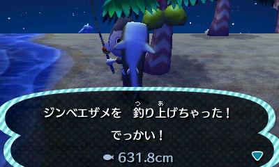 ジンベエザメを釣り上げた!