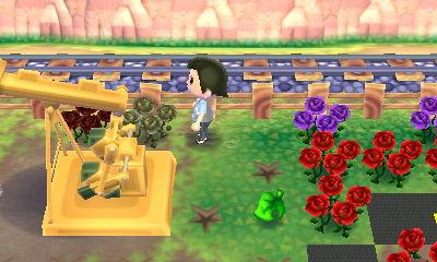 右側の薔薇が枯れている