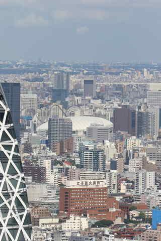 東京ドーム・よみうりランド・台東区役所など