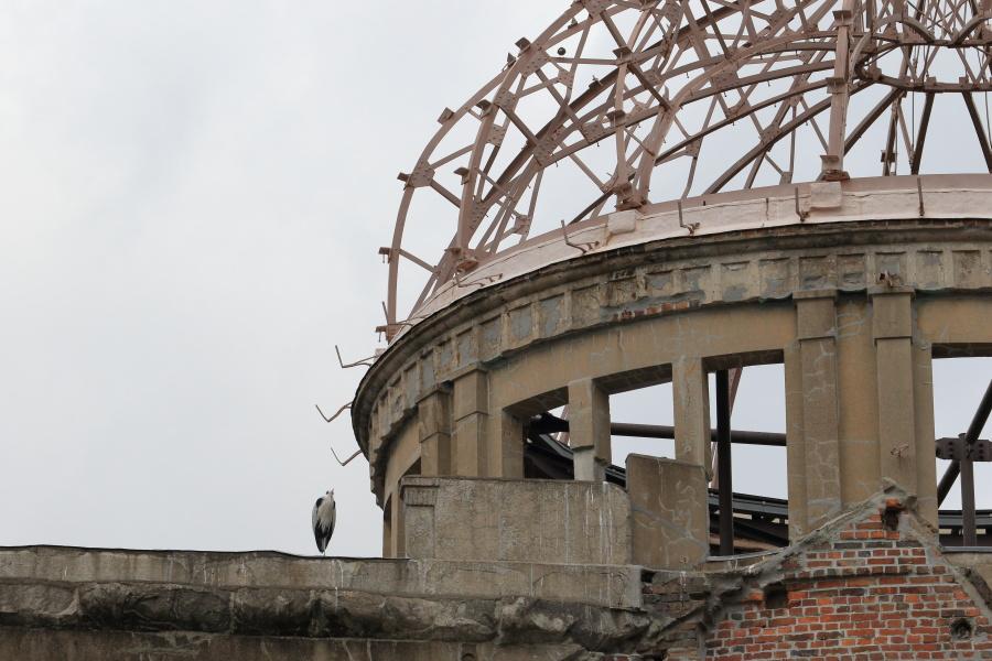 原爆ドームと野鳥