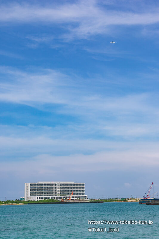JALの飛行機とリゾートホテル