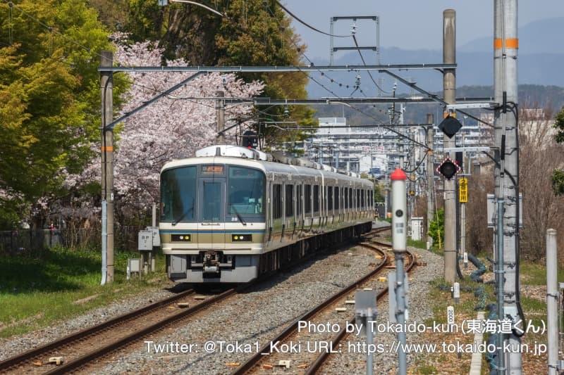 満開の桜と木幡駅を通過する221系